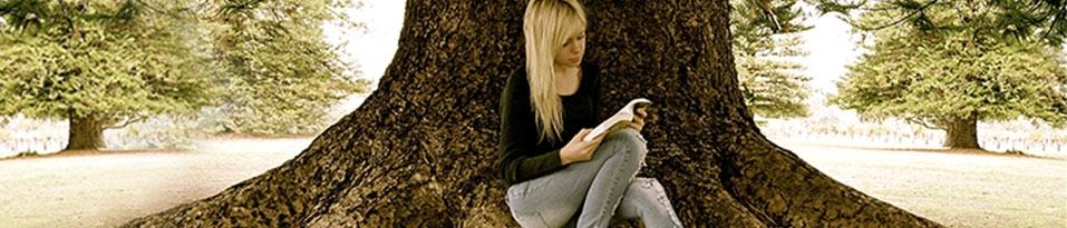 Bücher zum Träumen - Lesende Frauen